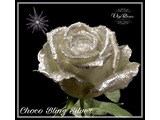 Chico Bling Silver R461