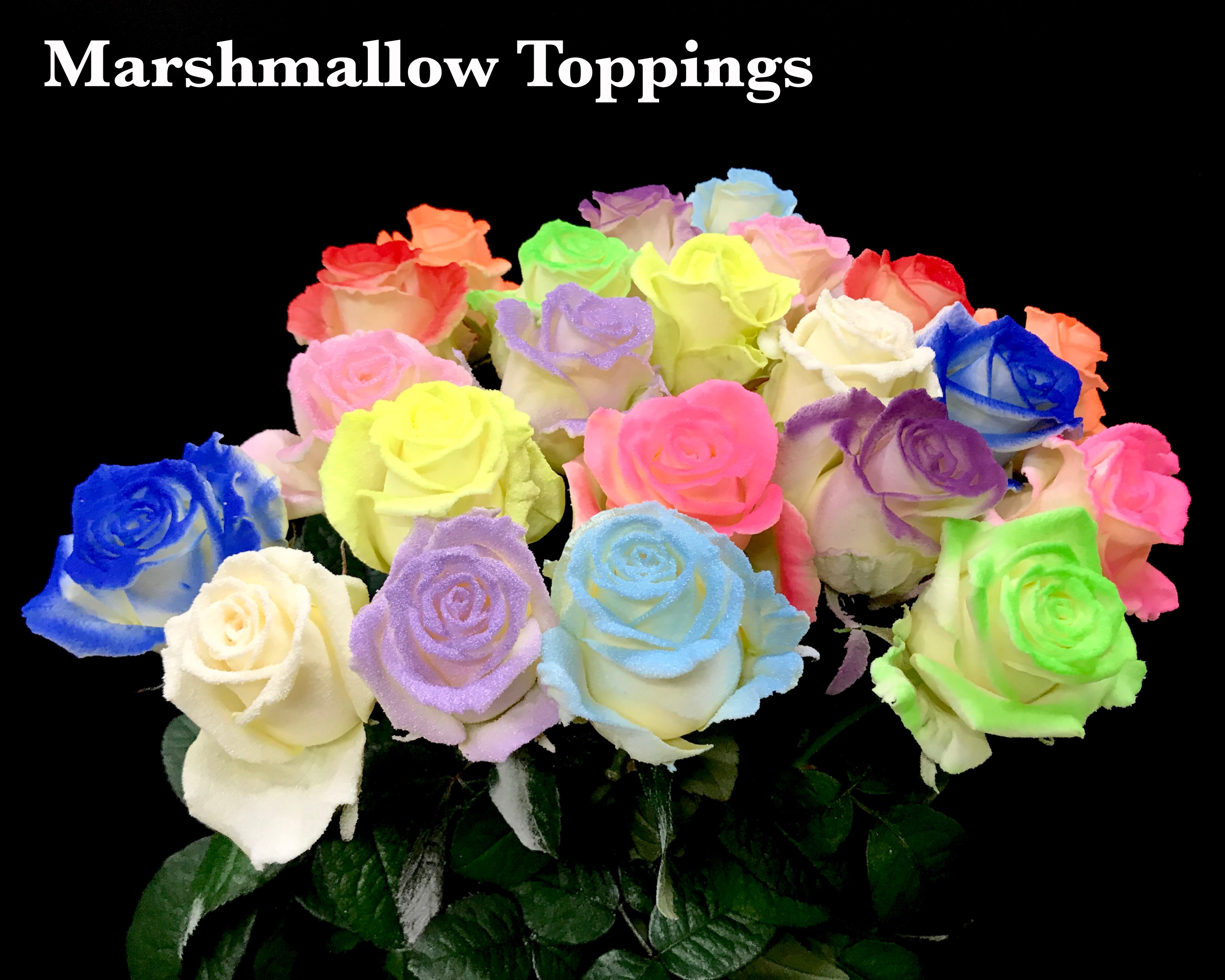 The Marshmallow Toppings - Sassen B.V. - VIP Roses
